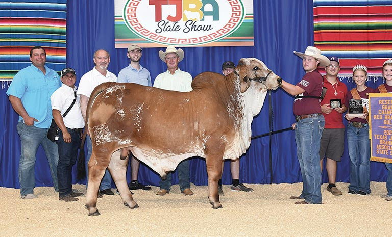 2020 TJBA Reserve Grand Champion