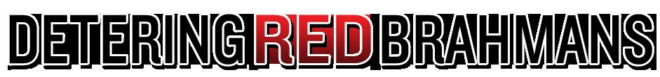 detering-red-brahmans-title